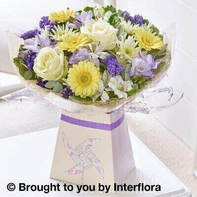 Purple and Yellow Flowers - New Baby Flowers