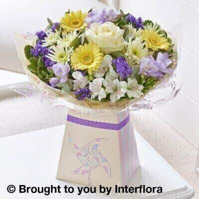 <h1>Purple and Yellow Flowers - New Baby Flowers</h1>