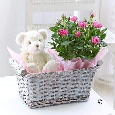 Baby Girl Gift Basket: Booker Flowers and Gifts
