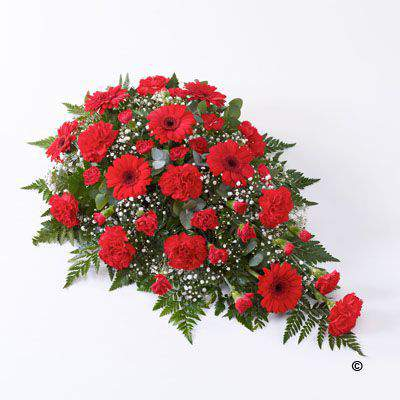 This striking floral tribute includes a generous selection of fresh carnations - spray carnations and germini - all in a distinctive shade of bright red. The flowers are expertly arranged in a traditional teardrop spray and finished with white gypsophila an
