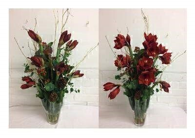 Christmas Amaryllis Vase Arrangement: Booker Flowers and Gifts