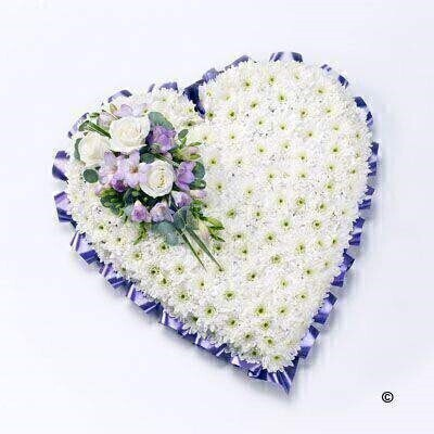 A classic heart-shaped design covered with a mass of white double spray chysanthemums and finished with a spray of white large-headed roses, lilac freesia and eucalyptus.