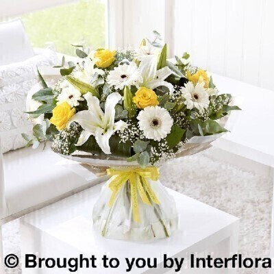 Yellow and White Flowers -andnbsp;Flowers in Water
