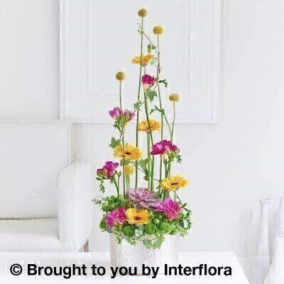 Contemporary Garden Arrangement: Booker Flowers and Gifts