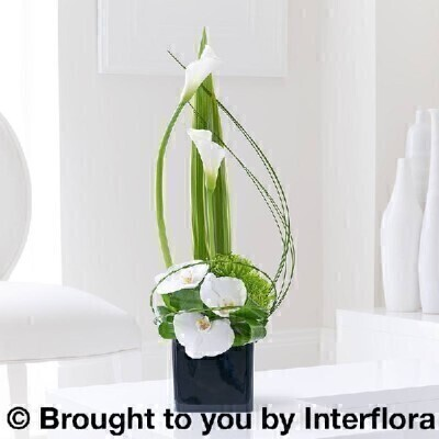Cool Calla Lily and Orchid Swirl Arrangement: Booker Flowers and Gifts