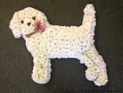 Dog In White Funeral Tribute: Booker Flowers and Gifts