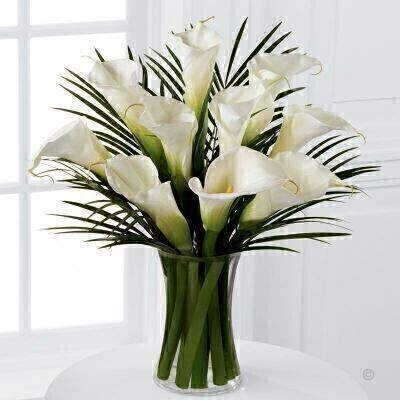 Simple and sophisticated these exquisite full-sized white calla lilies are accented by lush palm leaves and arranged in a sleek clear glass vase to create a wonderful heartfelt gesture.<br><br>This product contains 10 Stems