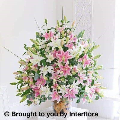 Fabulous 50 Pink and White Lily Arrangement: Booker Flowers and Gifts