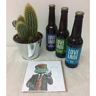Fathers Day Tipsy Toad Cactus Gift Set: Booker Flowers and Gifts