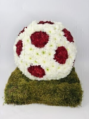 A mass of white double spray chrysanthemums are used in this football-themed three dimensional tribute - with some sprayed black to create the distinctive pattern. The football is then displayed on a moss-covered base.