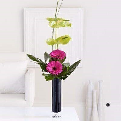 Gerbera and Anthurium Vase: Booker Flowers and Gifts