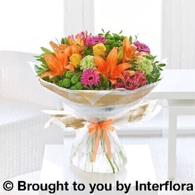 Get Well Vibrant Hand Tied - STANDARD: Booker Flowers and Gifts