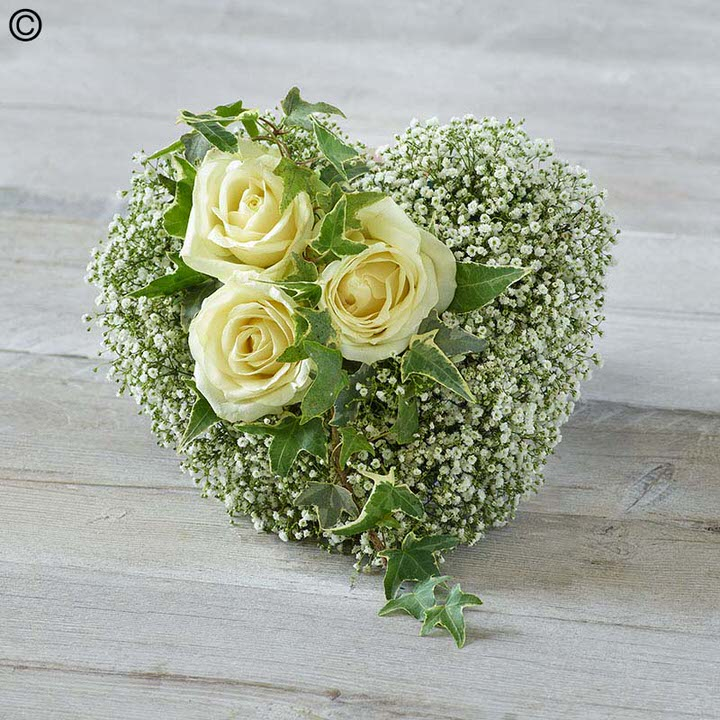 This white heart shaped tribute is a simple and very graceful design. Three perfect cream large-headed roses trimmed with China grass are carefully set on a bed of delicate white gypsophila flowers.