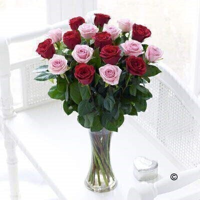 Pink and Red Roses - Flower in Vase