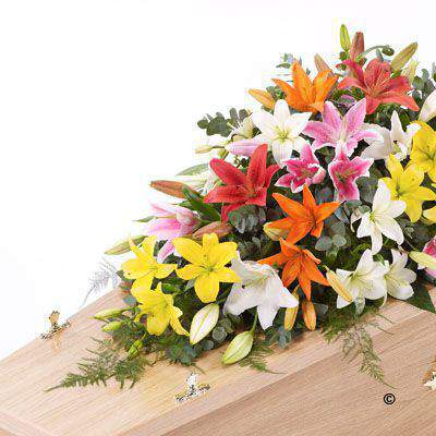 A blanket of Oriental Lily in mixed colours is beautifully complemented by an array of luxurious deep green leaves to create this simple but striking casket spray.