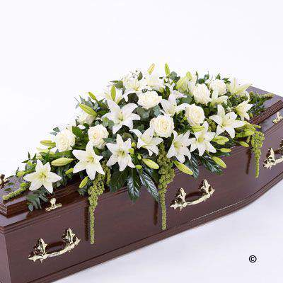 Beautiful Asiatic Lily and large-headed Rose in pure white are used to create this elegant large casket spray. The fresh flowers are enhanced with trails of green amaranthus as well as ruscus - aralia leaves and eucalyptus.