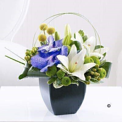 Lily and Vanda Orchid Arrangement: Booker Flowers and Gifts