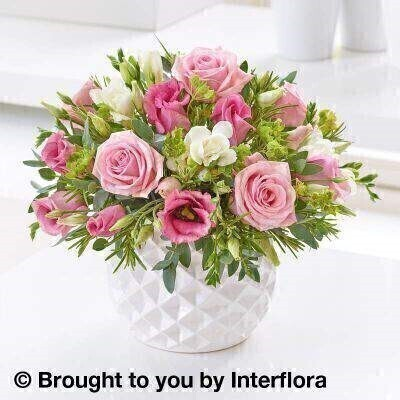 Marshmallow Pink Rose and Freesia Arrangement: Booker Flowers and Gifts
