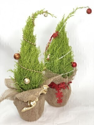 Pair of Grinch Christmas Trees: Booker Flowers and Gifts