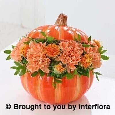 Perfect Pumpkin Ceramic: Booker Flowers and Gifts