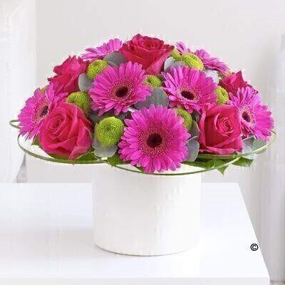 Pink Rose and Germini Arrangement: Booker Flowers and Gifts