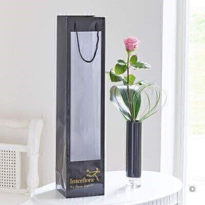 Pink Rose in Vase and Gift Bag: Booker Flowers and Gifts