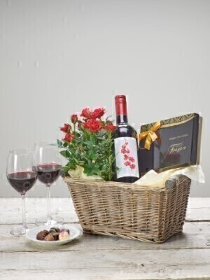 Red Wine and Rose Plant - Gift Basket