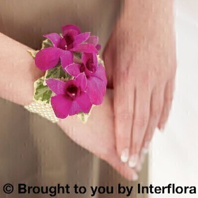 <h1>Purpleandnbsp;Flowers -andnbsp;Flowers on a Bracelet</h1>