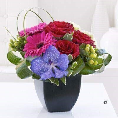 Rose Gerbera and Vanda Orchid Arrangement: Booker Flowers and Gifts