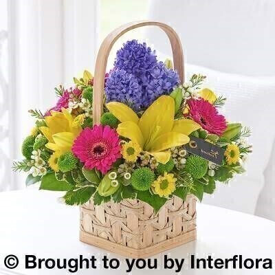Scented Spring Basket - PLUS: Booker Flowers and Gifts