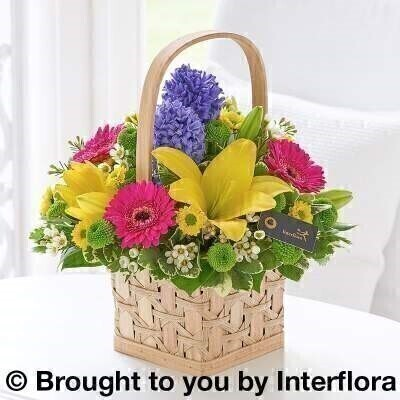 Scented Spring Basket: Booker Flowers and Gifts