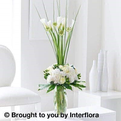 White Flowers  Modern Flower Arrangement<br><br>Liverpool Flower Delivery<br><br>We offer advanced booking flower delivery same day flower delivery 3 hour Flower delivery guaranteed AM PM or Evening Flower Delivery and we are now offering Sunday Flower Delivery. .<br><br>Hand arranged by our florists into vase To give the best occasionally we may make substitutes Our flowers backed by our 7 days freshness guarantee Approximate dimensions 95x45cm This product is available for delivery throughout the UK<br><br>THIS THIS PRODUCT IS HAND ARRANGED AND COMES IN THE VASE. This is the ultimate expression of floral artistry. A wonderful collection of white Hydrangea cream roses and green hypericum berries create interest within a dome of petals accentuated with silver decorative wire and a collar of green foliage. Calla Lilies Ornithogalum and Steel Grass erupt from the centre creating a sophisticated floral design.<br><br>Featuring 5 white calla lilies 5 green hypericum 8 white large headed roses 4 white hydrangeas and 5 Arabian starflowers with aspidistra and aralia leaves and steel grass presented in a curved cylinder glass crackle vase.<br><br>The best florist in Liverpool<b><b>Come to Booker Flowers and Gifts Liverpool for your Beautiful Flowers and Plants if you really want to spoil we also have a great range of Wines Champagne Balloons Vases and Chocolates that can be delivered with your flowers. To see the full range see our extras section. You can trust Booker Flowers and Gifts can deliver the very best for you