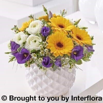 Spring Brights Arrangement: Booker Flowers and Gifts