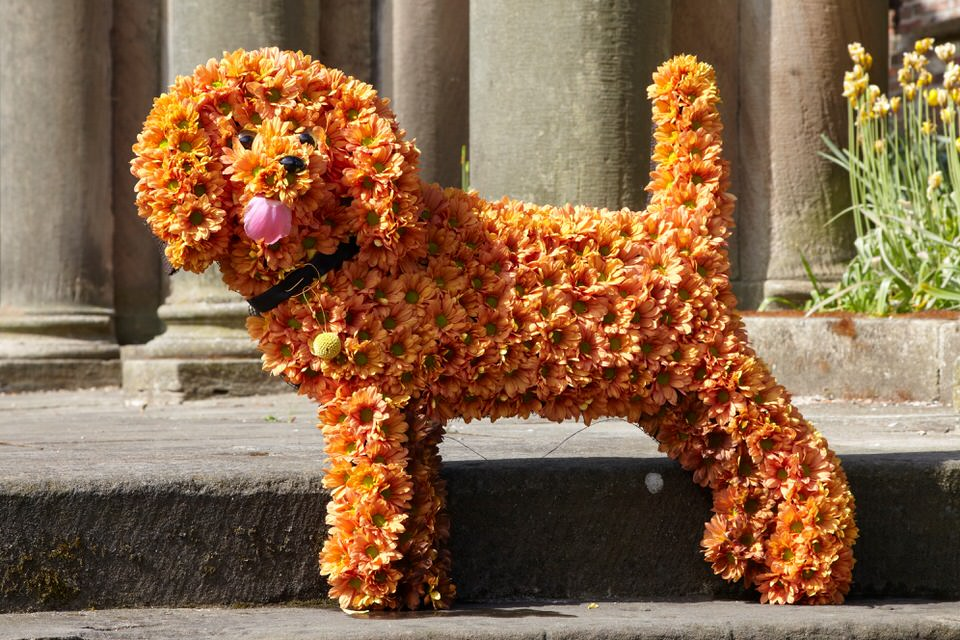 Standing Dog Tribute | Funeral Flowers