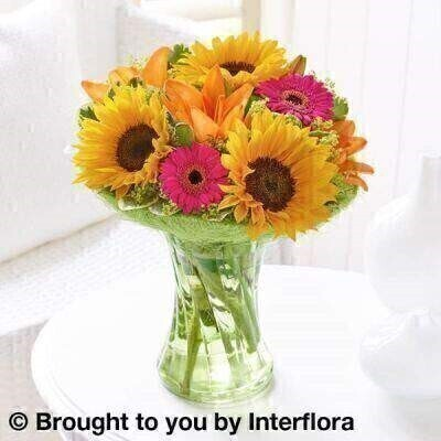 Sunflower perfect gift : Booker Flowers and Gifts