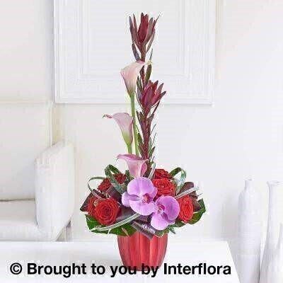 Tropical Orchid and Leucadendron Arrangement: Booker Flowers and Gifts