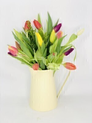 Tulip Medley Jug: Booker Flowers and Gifts