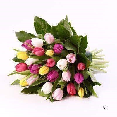 Tulip Sheaf: Booker Flowers and Gifts