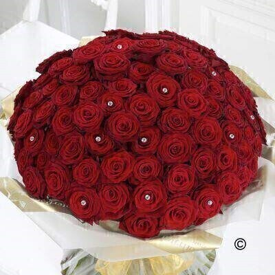 Ultimate 100 Grand Prix Rose Hand-tied: Booker Flowers and Gifts