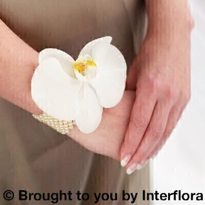 White Orchid and Pearl Wrist Corsage: Booker Flowers and Gifts