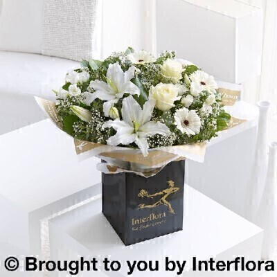 Whiteandnbsp;Flowers - Flowers in Water
