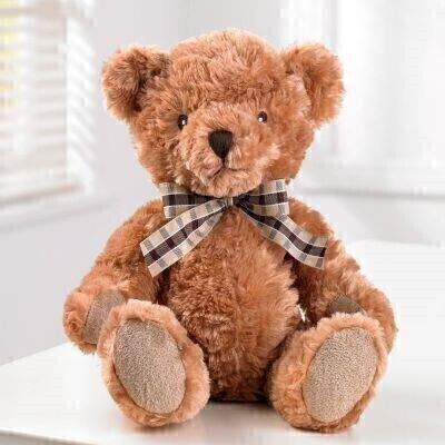THIS ITEM WILL NEED TO ACCOMPANY A FLOWER ORDER OR BE A COMBINATION OF EXTRA ITEMS TO REACH OUR MINIMUM ORDER OF 25<br><br> Bertie Bear makes a cute addition to your gift  and is sure to be loved by young and old.<br><br> Bertie is a plush 'baby safe' bear  sitting height 24cm.