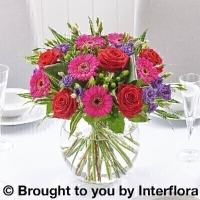 Vibrant Flowers – Vase of Flowers<br><br> Liverpool Flower Delivery<br><br> We offer advanced booking flower delivery same day flower delivery 3 hour Flower delivery guaranteed AM PM or Evening Flower Delivery and we are now offering Sunday Flower Delivery. .<br><br> <ul><li>Hand arranged by our florists into vase</li><li> To give the best occasionally we may make substitutes</li><li> Our flowers backed by our 7 days freshness guarantee</li><li> Approximate dimensions 32x32cm</li><li> This product is available for delivery throughout the UK</li></ul><br><br>  THIS THIS PRODUCT IS HAND ARRANGED AND COMES IN THE VASE. Special occasions deserve the most striking flowers. Use this bold arrangement as an eye-catching centrepiece. Dramatic and contrasting stems are expertly arranged in a stylish glass globe to create a modern focal point.<br><br>  Featuring 3 dark red germini  3 cerise germini  2 green hypericum  3 blue lisianthus  2 cerise large headed roses and 3 orange large headed roses with folded aspidistra leaves  variegated dracaena and salal presented in a large globe glass vase.<br><br> The best florist in Liverpool<b><b>Come to Booker Flowers and Gifts Liverpool for your Beautiful Flowers and Plants if you really want to spoil we also have a great range of Wines Champagne Balloons Vases and Chocolates that can be delivered with your flowers. To see the full range see our extras section. You can trust Booker Flowers and Gifts can deliver the very best for you