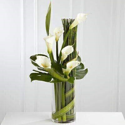 Sophisticated white calla lilies are expertly arranged amongst a selection of exquisite lush greens and placed in a clear glass cylinder vase with a gold rim.