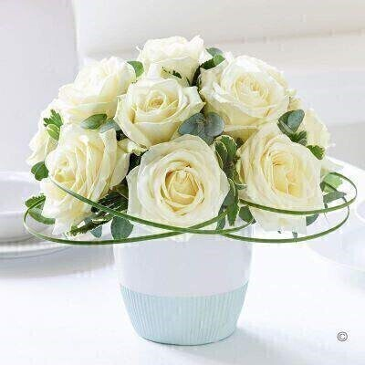 THIS ARRANGMENT IS IN FLORAL FOAM AND COMES PRE ARRANGED IN CONTAINER<br><br>Premium quality white roses beautifully arranged and trimmed with a little foliage for contrast: this is a simple yet impressive luxury gift. The good news is that this arrangement will look fantastic in any home thanks to its classic beauty and timeless appeal.<br><br>Featuring 12 white large headed roses arranged with steel grass eucalyptus and pittosporum and presented in a two-toned duck egg blue and white ceramic.<br><br>This product contains 12 stems.<br><br>Approximate Product Dimensions:<br><br>Height: 24cm Width: 24cm