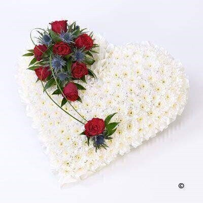 A classic heart-shaped design covered with a mass of white double spray chysanthemums and finished with a spray of red large-headed roses - eryngium and ruscus.