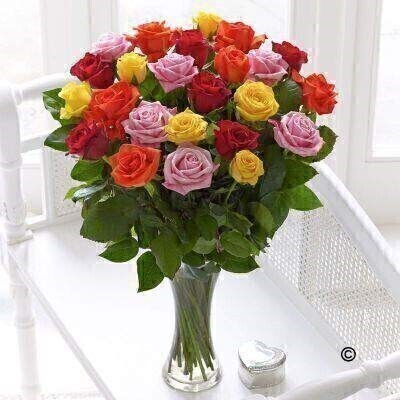 <h1>Mixed Roses - Flower in Vase</h1>