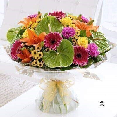 The Extra Large Version of our Exotic Mixed Hand-Tied. andnbsp;For a gift that is a little bit different - this brightly coloured bouquet is the perfect choice. The vibrant orange lilies look amazing set against lime green anthuriums - and the addition of yellow and cerise creates a really zesty mix that is certain to impress. Featuring green anthuriums - cerise carnations - orange Asiatic lilies - yellow large-headed roses - cerise gerbera and yellow spray chrysanthemums - with pittosporum and salal - gift-wrapped and trimmed with a gold voile ribbon.