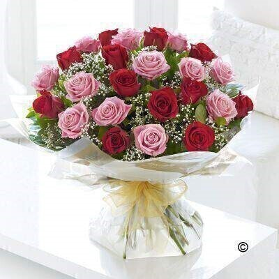 <h1>Pink and Red Rosesandnbsp;- Flowers in Water</h1>