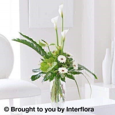 White Flowers –Vase of Flowers<br><br> Liverpool Flower Delivery<br><br> We offer advanced booking flower delivery same day flower delivery 3 hour Flower delivery guaranteed AM PM or Evening Flower Delivery and we are now offering Sunday Flower Delivery. .<br><br> <ul><li>Hand arranged by our florists</li><li> To give the best occasionally we may make substitutes</li><li> Our flowers backed by our 7 days freshness guarantee</li><li> Approximate dimensions 85x60cm</li><li> This product is available for delivery throughout the UK</li></ul><br><br>  THIS PRODUCT IS HAND  Arranged AND COMES IN THE VASE This timeless arrangement of stunning lilies  orchids and anthurium is impossible to ignore. Standing tall at around 85cm  this beautifully crafted vase is a gift to remember.<br><br Featuring 2 green anthurium  3 white calla lilies  2 green cymbidium orchid heads and 4 white germini with aralia  aspidistra and palm leaves  China grass  pittosporum and salal  presented in a cylindrical crackle glass vase.<br><br> The best florist in Liverpool<b><b>Come to Booker Flowers and Gifts Liverpool for your Beautiful Flowers and Plants if you really want to spoil we also have a great range of Wines Champagne Balloons Vases and Chocolates that can be delivered with your flowers. To see the full range see our extras section. You can trust Booker Flowers and Gifts can deliver the very best for you